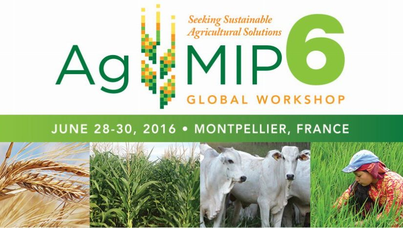 AgMIP Global Workshop