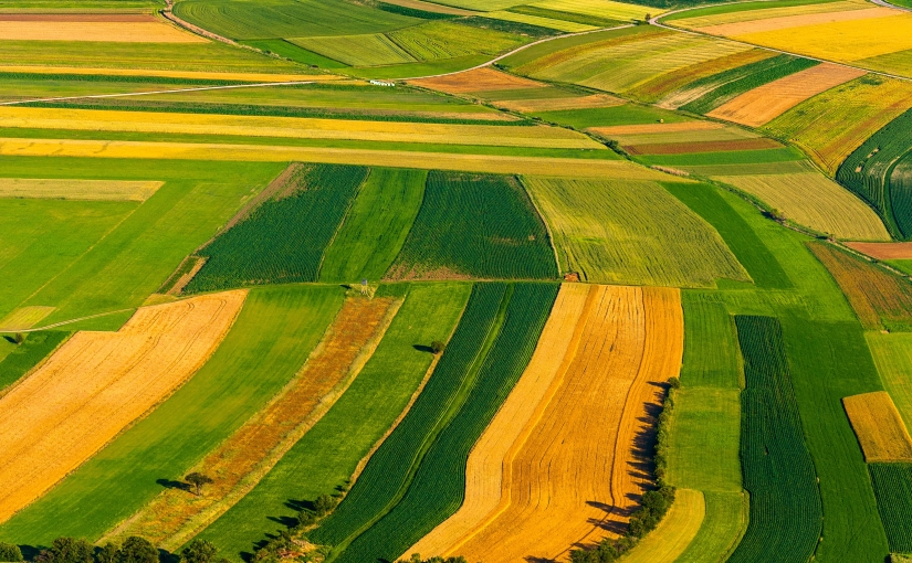 Seminario Internacional: Advances and Challenges for Technology Use in Climate SmartAgriculture